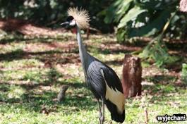03 Parque das aves