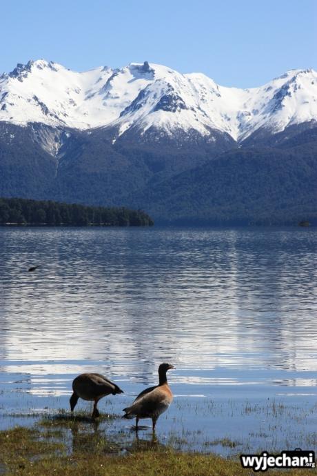 01 Okolice Villa Traful i Bariloche
