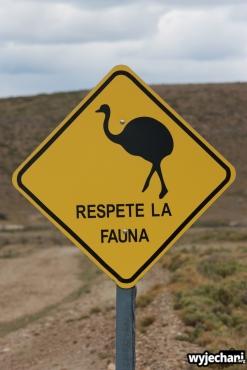 09 PN Monte Leon - znak