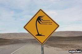 112 Carretera Austral, epilog - w drodze do Tres Lagos - silne wiatry