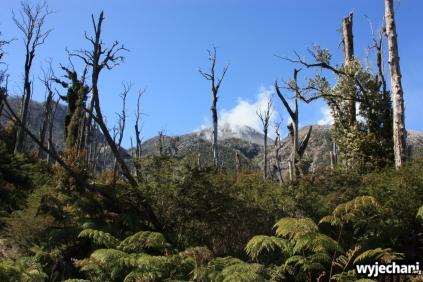 26 Carretera Austral, cz3 - wulkan Chaiten
