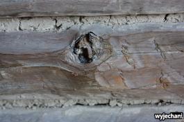 54 Carretera Austral, cz6 - cabana rustykalna - laczenia belek drewnianych