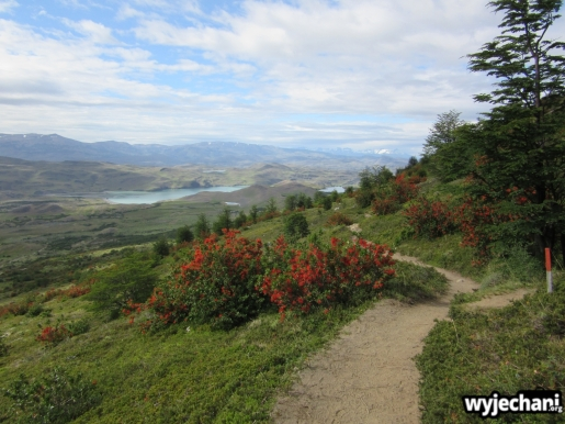 01 Torres del Paine - dzien 3