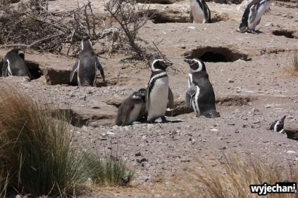04 Cabo Dos Bahias
