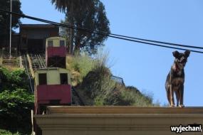12 Valparaiso