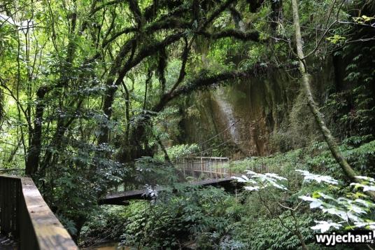 03 Waitomo - Natural Bridge