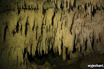 06 Waitomo - Piripiri Caves