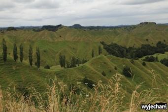 07 Taranaki - Forgotten World Highway