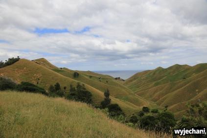 07 Waitomo