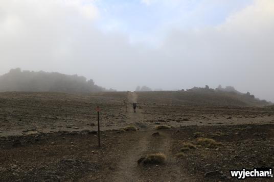09 PN Tongariro - dz2