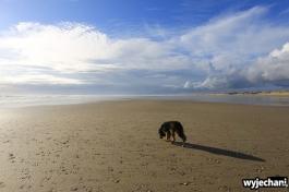 10 Northland - 90 mile beach