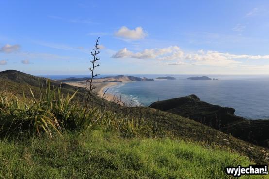 14 Northland - Cape Reinga