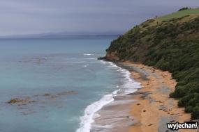 02 Pingwiny - okolice Oamaru