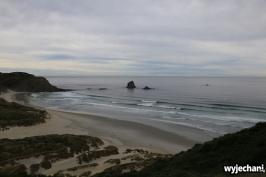 07 Polwysep Otago