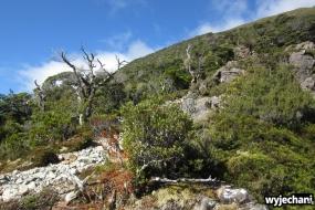 12 Arthur's Pass - Avalanche Peak