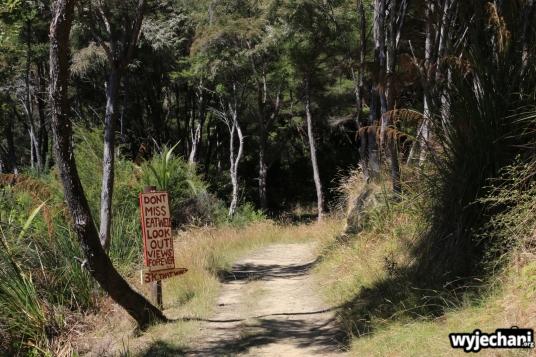 12 Marlborough Sounds - Queen Charlotte Track