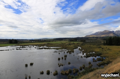 09 PN Fiordland - Wetland