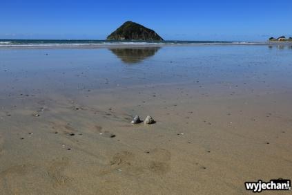 08 Wschodnie wybrzeze - Anaura Bay