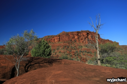 15 Outback cz.2 - Finke Gorge NP - Palm Valley