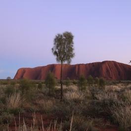 31 Outback cz.1 - Uluru - wschod slonca