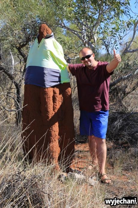 35 Outback cz.2 - termitiera