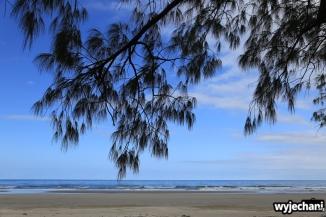 04 Cape York - PN - Daintree NP - Noah Beach