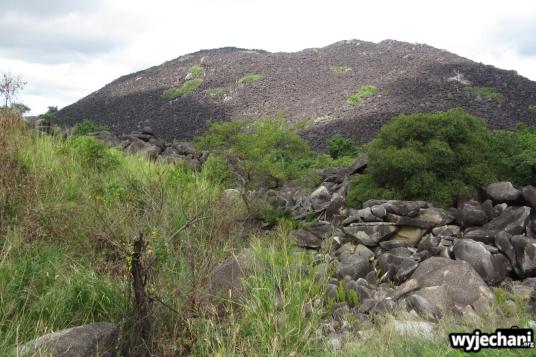 14 Cape York - PN - Black Mountain NP