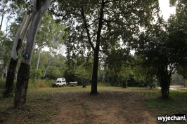 18 Cape York - PN - Lakefield NP - 12 Mile Lagoon