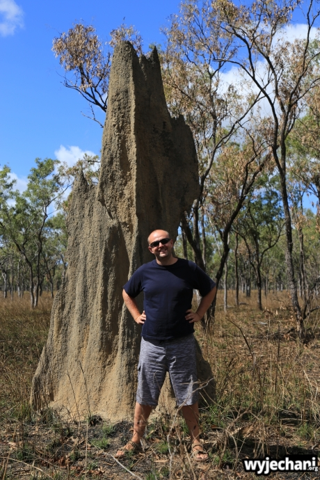 22 Cape York - PN - Lakefield NP
