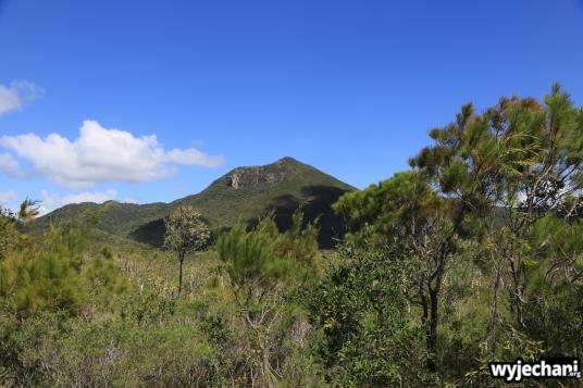 26 Cape York - PN - Iron Range NP