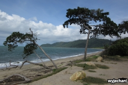 32 Cape York - inne miejsca - miejsce kawowe