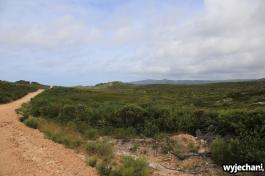 58 Cape York - przejazdy - droga do Elim Beach