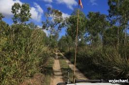 61 Cape York - przejazdy - droga do Lakefield NP