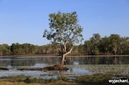 26-kakadu-np-sandy-billabong