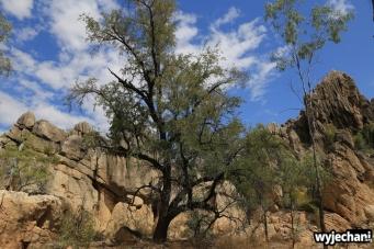 39-kimberley-pn-geike-gorge
