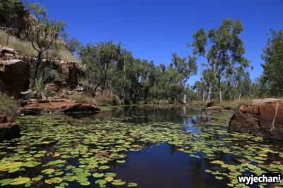 50-kimberley-gibb-river-road-adcock-gorge