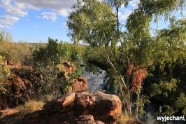 52-kimberley-gibb-river-road-barnett-river-gorge
