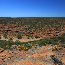 03-pn-kalbarri-the-loop-trail