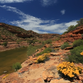04-pn-kalbarri-the-loop-trail
