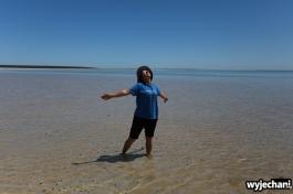 10-shark-bay-shell-beach