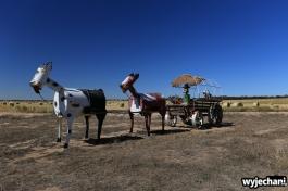 07-tin-horse-highway